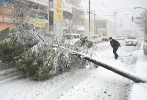 hokkaido_snowstorm_1