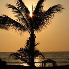 mexico sun